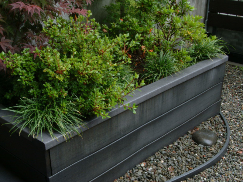 trex planter and curved border