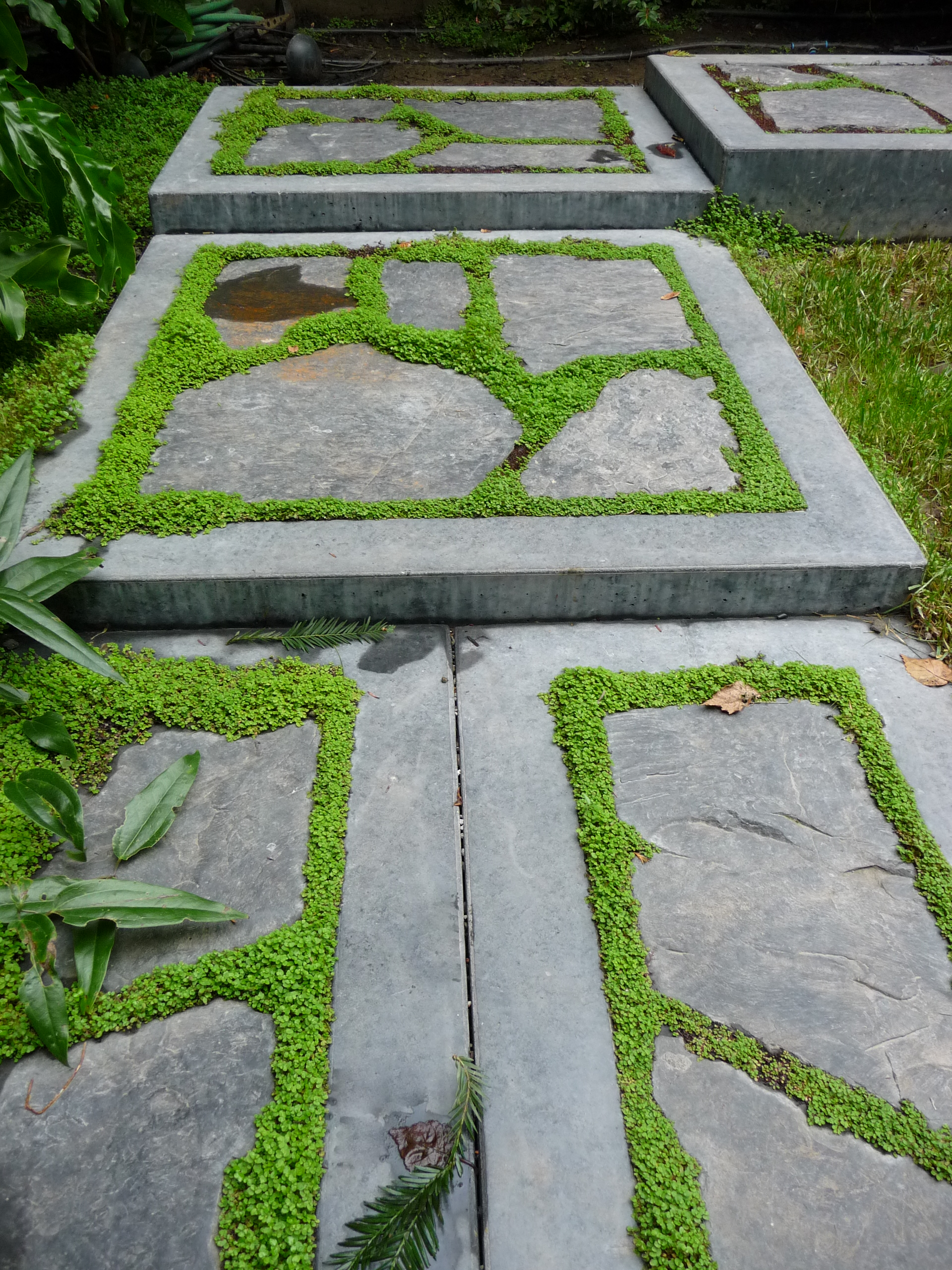 moss stone steps
