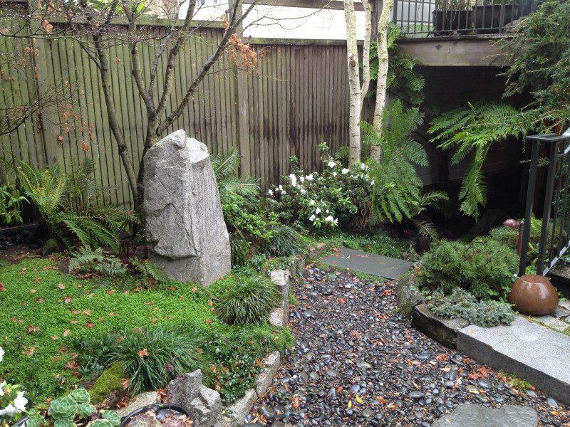 stone & plants